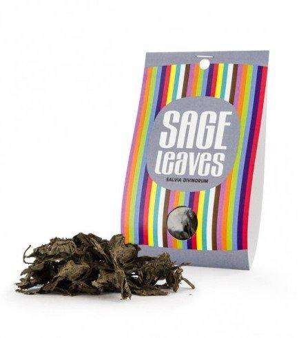 Salvia Divinorum bladeren, 10 gram