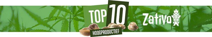 Top 10 Hoogproductieve Soorten