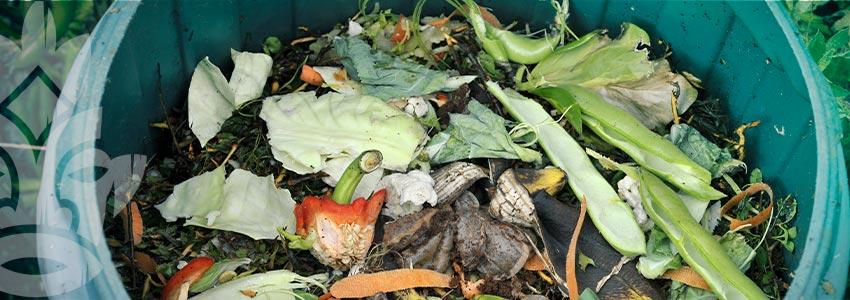 Zo Maak Je Compostthee En Enzymrijke Oplossingen
