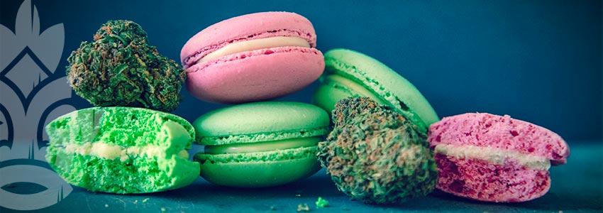 Het Gebruik Van Medicinale Marihuana