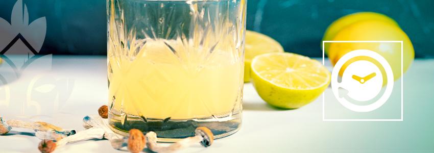 Hoelang Duurt Het Effect Van Lemon Tek?