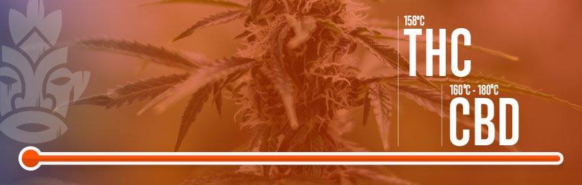 Temperatuur voor het verdampen van Cannabis
