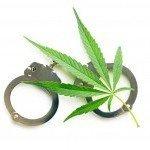 8 Redenen waarom mensen worden betrapt voor het kweken van cannabis