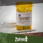Een Kijk Op Cannabis Als Pijnstiller