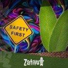 Salvia Divinorium - 10 tips voor een veilige trip