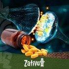 Monoamine Oxidase Inhibitors (MAOIs) - Waarschuwing