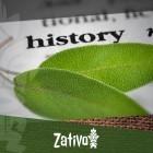 De Geschiedenis Van Salvia