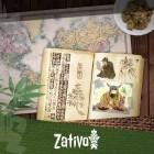 Over De Oorsprong En Geschiedenis Van Cannabis