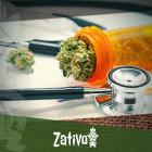 Wat Je Moet Weten Over Medicinale Cannabis