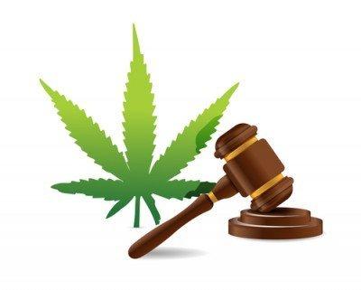 Britse regering aangemoedigd om cannabis te reguleren