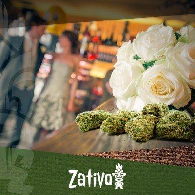 De Nieuwste Trend: Een Open Wietbar Op Jouw Bruiloft!