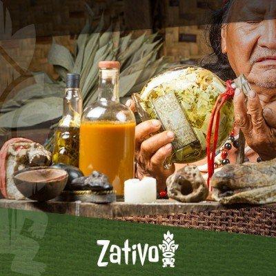 Wat Is Ayahuasca?