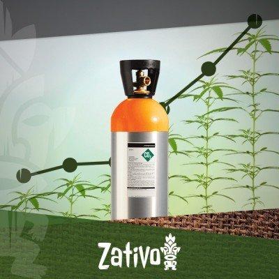 Voeg CO2 toe aan je Kweekruimte en Stimuleer je Opbrengsten