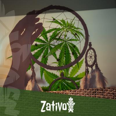 Hoe Beïnvloed Cannabis Je Slaap?