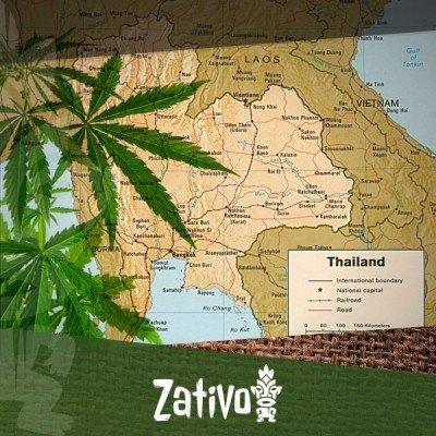 De Oorsprong Van Thai Soorten