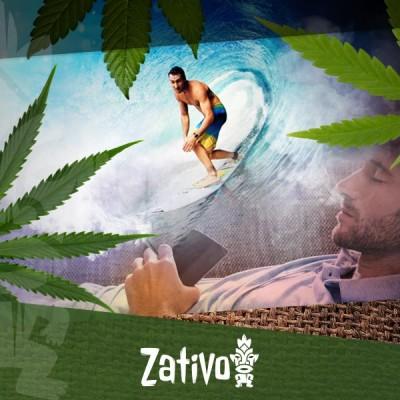 De Verschillende Cannabissoorten En Hun Specifieke Effecten