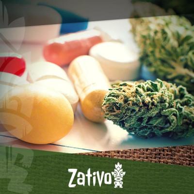 Is Cannabis Het Antwoord Op Resistentie Tegen Antibiotica?