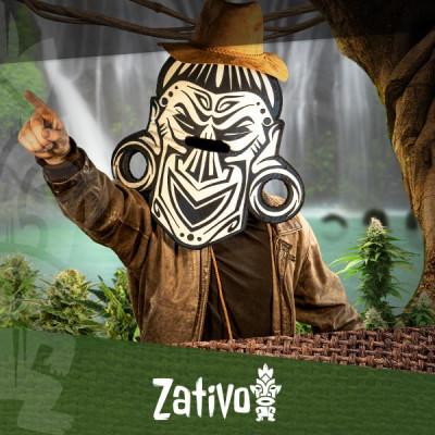 Vind Je Favoriete Wietsoort Met De Cannabis Seedfinder!